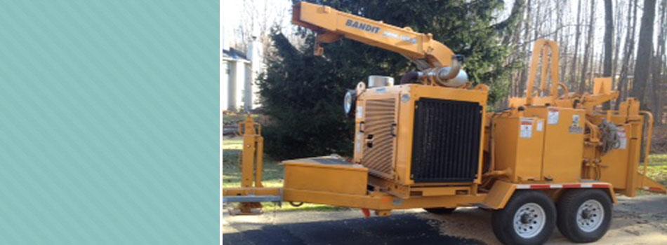 Tree Service | Monroe, NY | Acorn Tree & Crane Service | 845- 987-4610