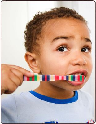 Dental Fillings   Champaign, IL   Mitchem Dental   217-352-4100