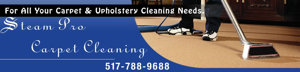 Carpet Steam Cleaners - Jackson, MI - Steam Pro Carpet Cleaning