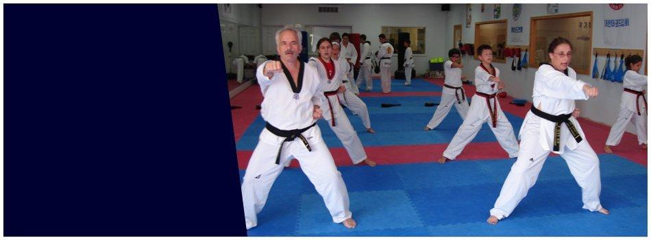 Taekwondo Training | Harwood Heights, IL | Ong Taekwondo Academy  | 773-763-9200