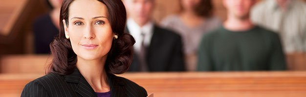 Professional Attorney