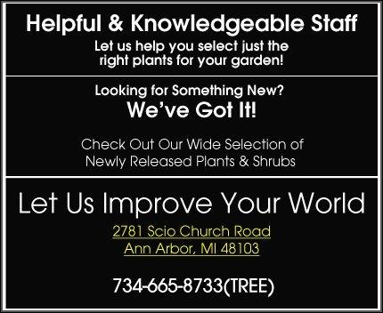 Landscaping | Ann Arbor, MI | Abbott's Landscape Nursery | 734-665-8733 (TREE)