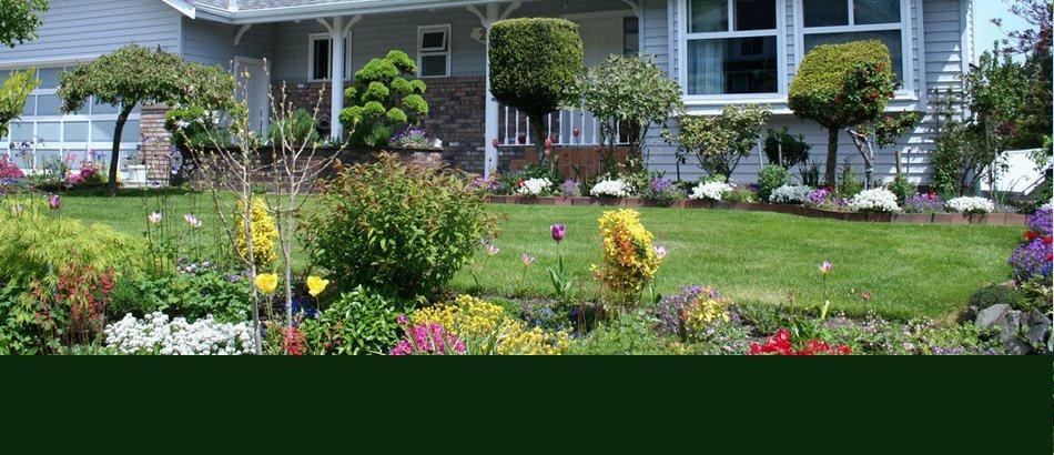 Plants | Ann Arbor, MI | Abbott's Landscape Nursery | 734-665-8733 (TREE)