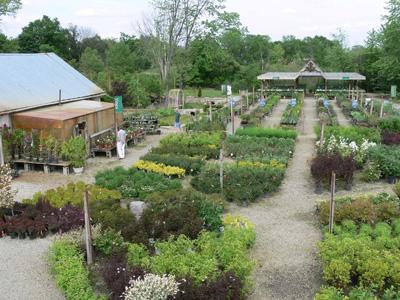 Garden Center Ann Arbor Mi Abbott S Landscape Nursery