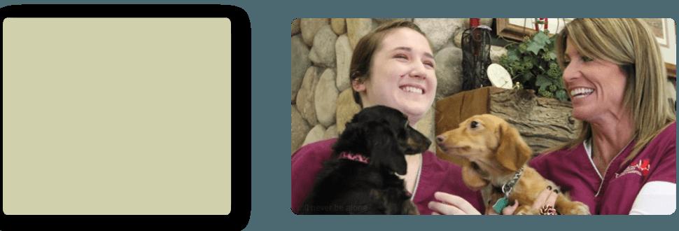 Dog Boarding | Turlock, CA | Taylor ER Veterinary Emergency Hospital | 209-669-8600