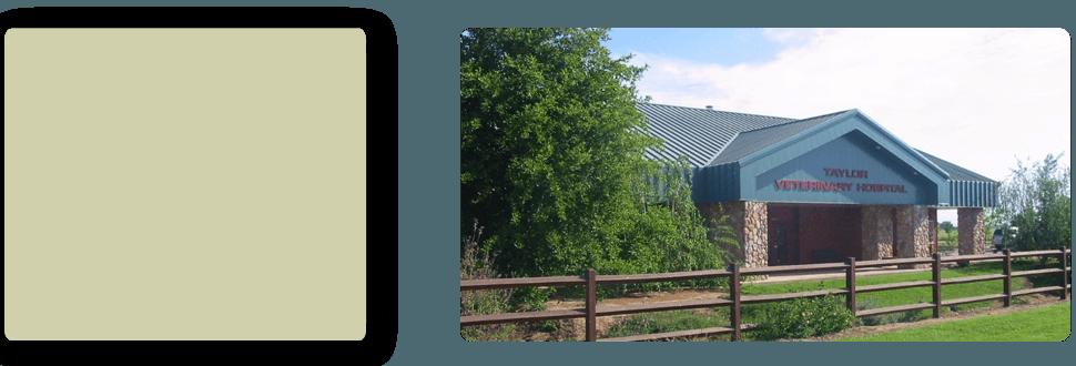 Emergency Veterinarian | Turlock, CA | Taylor ER Veterinary Emergency Hospital | 209-669-8600