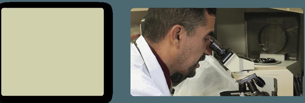 Animal Doctor   Turlock, CA   Taylor ER Veterinary Emergency Hospital   209-669-8600