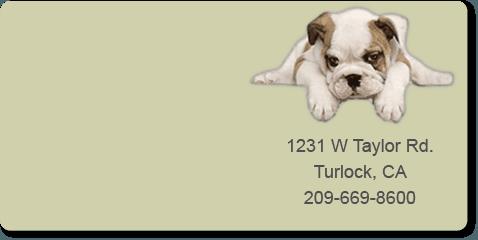 Animal hospital | Turlock, CA | Taylor ER Veterinary Emergency Hospital | 209-669-8600