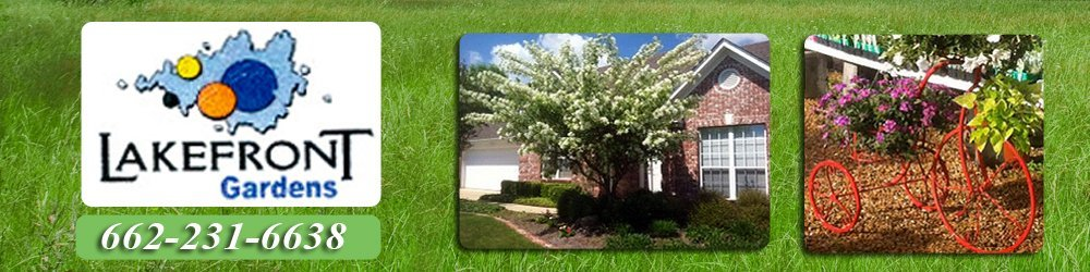 Landscaping Services - Tupelo, MS - Lakefront Gardens