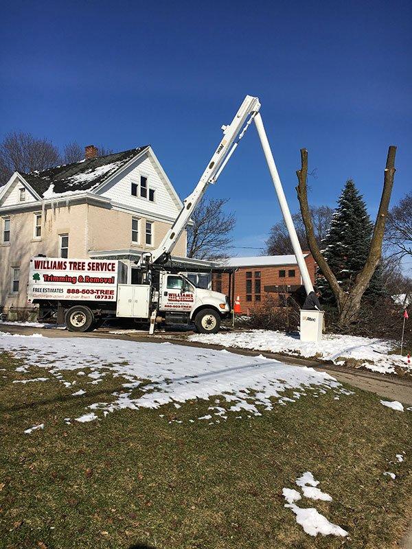 Tree service truck