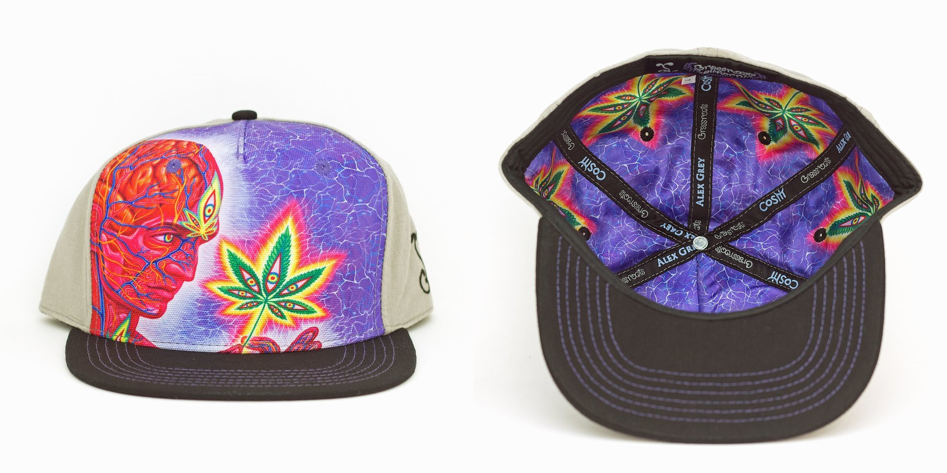 Alex Grey Cannabis Sutra Gray Fitted Grassroots California Hat