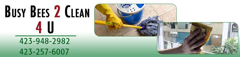 Cleaning Service,Chuckey, TN ,Busy Bees 2 Clean 4 U