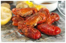 Cajun cuisine | Youngsville, LA | Cajun Commander Catering | 337-349-4557