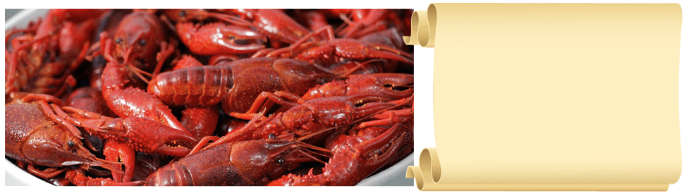 Authentic cajun cuisine | Youngsville, LA | Cajun Commander Catering | 337-349-4557