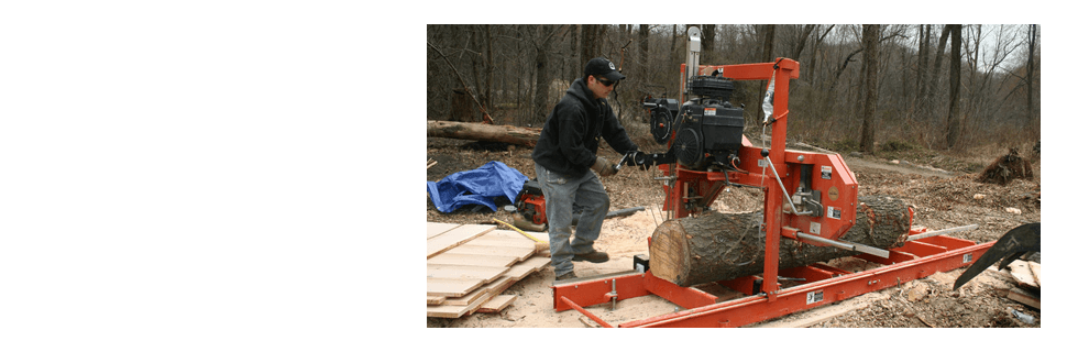Stump grinding | Scotia, NY | D & L Tree Service LLC | 518-399-1006