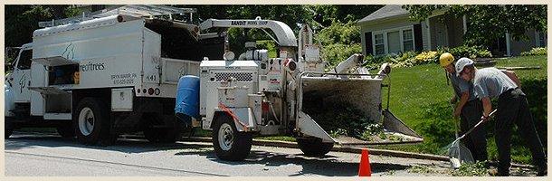 65 foot bucket truck | Scotia, NY | D & L Tree Service LLC | 518-399-1006