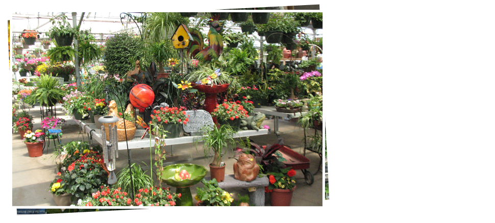 Plants on Reit's Garden Center