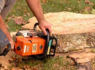 Commercial Tree Service | Newburgh, NY | 4 Seasons Tree Service | 845-565-8600