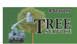 Tree service | Newburgh, NY | 4 Seasons Tree Service & Landscaping | 845-565-8600