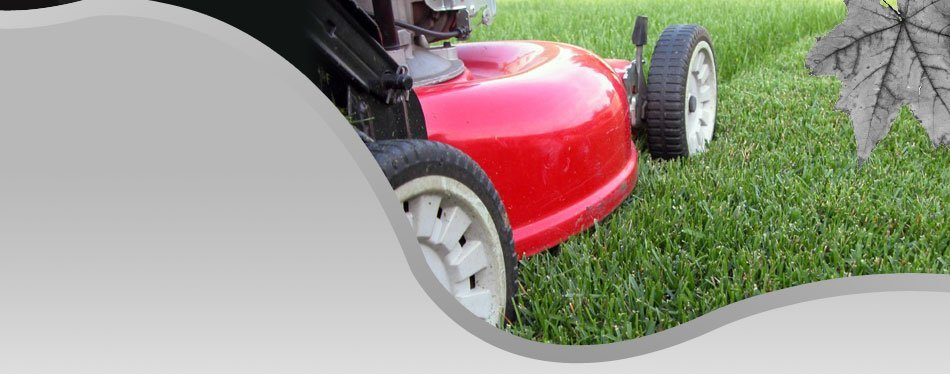 Close up of lawn mower
