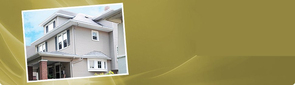 Vinyl siding with gutters and downspouts
