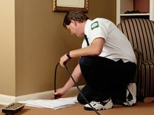 pest control services - Missoula,  MT - Professional Pest Management - Exterminator