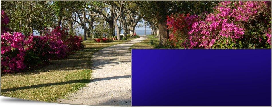 Auto Accident Lawyer   Gulfport, MS   Davis & Davis PLLC   228-864-9922