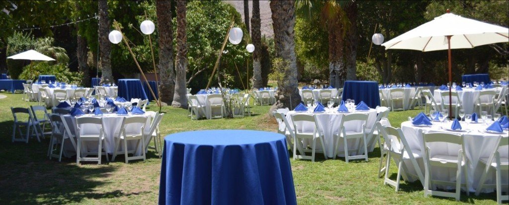 Party Rental Items