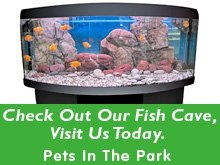 Fish tank - Butler, PA - Pets In The Park