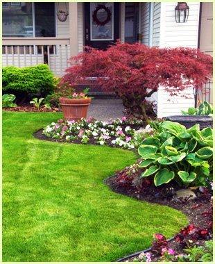 Planting   Keswick, VA   Timberland Associates   434-962-1662