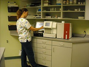 About Us | Menomonie, WI | Brakken Veterinary Clinic Inc. | 715-235-8404