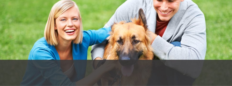 Brakken Veterinary Clinic Inc. | (Located Across From The Red Cedar Medical Center)