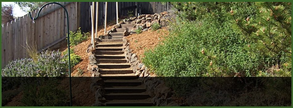 Stone stairs and bushes combined to make it look nice
