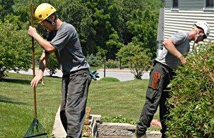 Men cleaning the garden