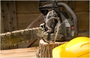 Stump Grinding | Landing, NJ | HN Tree Care | 973-347-0391