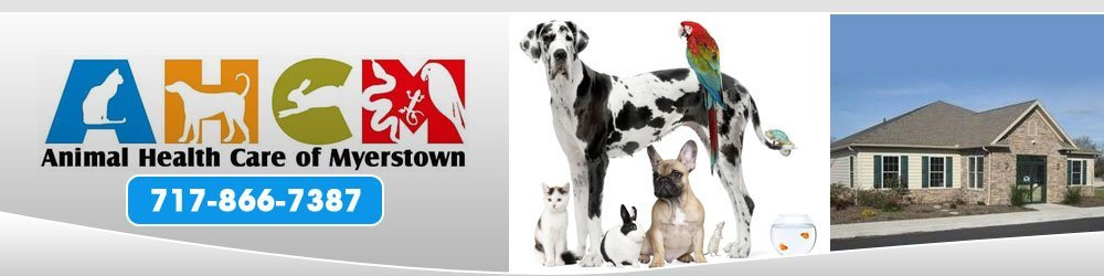 Veterinarian Myerstown, PA - Animal Health Care Of Myerstown