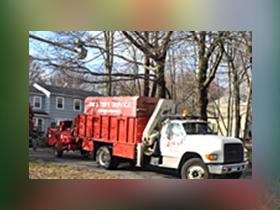 Jim's Tree Service truck