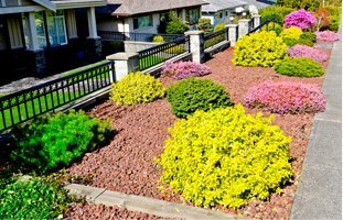 landscaping services | Schenectady, NY | T&P Lawn and Landscape | 518-631-5630