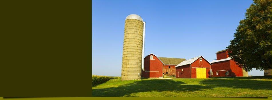 pet supplies | Lyons, GA | Onion City Farm Supply Inc | 912-526-3858