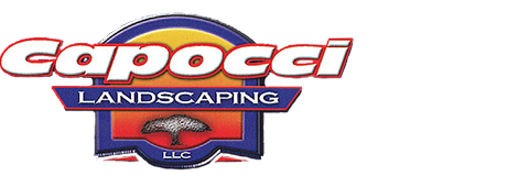 Landscaping | Port Chester, NY | Capocci Landscaping LLC | 914-939-5876