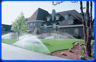Trimming and Edging   Port Chester, NY   Capocci Landscaping LLC   914-939-5876