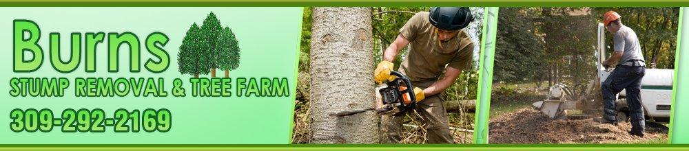 Tree Service Silvis, IL - BBurns Stump Removal & Tree Farm