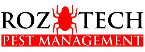groundhog removal | West, TX | Roz-Tech Pest Management | 254-826-3990