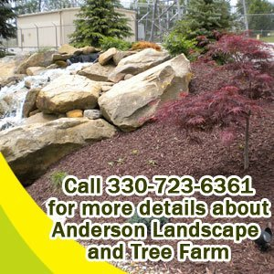 landscaping - Medina, OH - Anderson Landscape and Tree Farm - Call 330-723-6361 for more details about Anderson Landscape  and Tree Farm