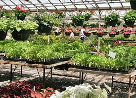 Gardening and Landscaping Supplies - Marietta, GA - Kelli Green Garden Center