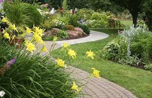 Garden landscape with flowers and walkway