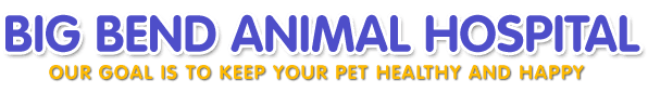 Big Bend Animal Hospital  - Logo