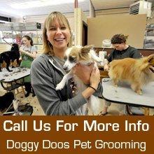 Dog Grooming - Billings, MT  - Doggy Doos Pet Grooming - Dog Salon