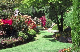 Lawn care | Island Park, NY | Top Notch Lawn Care | 516-889-3249