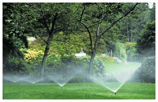 Sprinkler Systems | Staten Island, NY | Prime Sprinkler | 718-605-9685
